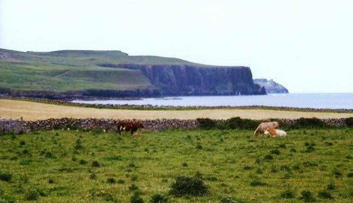 Cliff of Moher ; Irlande